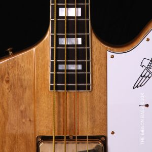 Custom shop Thunderbird, Francis Bucholz, The Gibson Bass Book